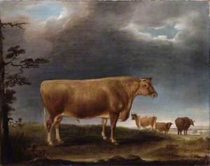 A Horned Cow in a Landscape, with Others