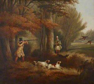 Pheasant-Shooting