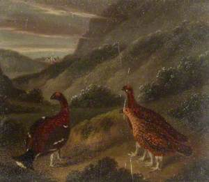 Landscape with Three Grouse