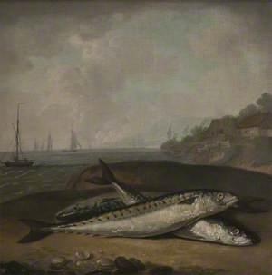 Mackerel on a Dorset Shore with the Golden Cap (near Bridport) in the Background (?)