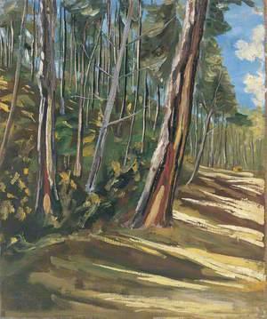 Trees, Mimizan