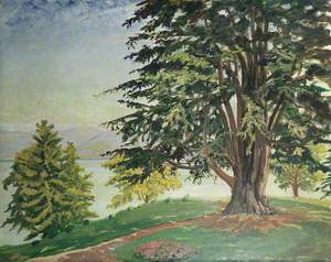 A Large Tree by Lake Como