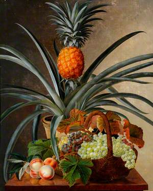 Still Life of a Pineapple Plant, Grapes and Peaches on a Table