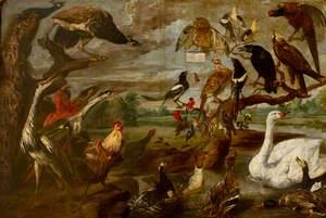A Concert of Birds (I)