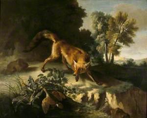 A Fox Stalking a Brace of Partridges