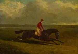 'The Baron', Winner of the St Leger, 1845