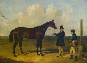 'Mango', Winner of the St Leger, 1837
