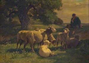 A Shepherd Boy and Sheep