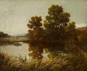 An Estuary Landscape