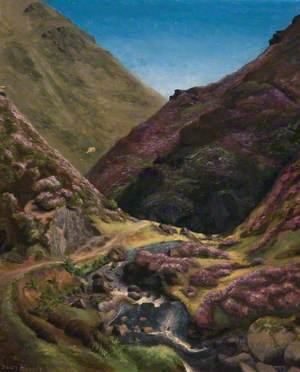 A Steep Highland Glen