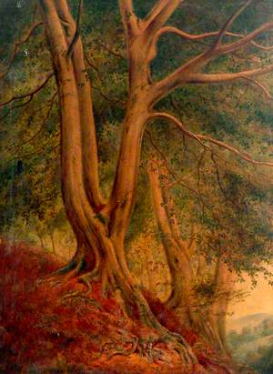 'A mound of even-sloping side wherein a hundred stately beeches grew'