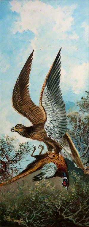 Eagle with Pheasant