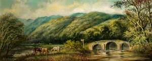 The Rheidol Valley, near Aberystwyth
