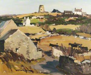 Anglesey Landscape