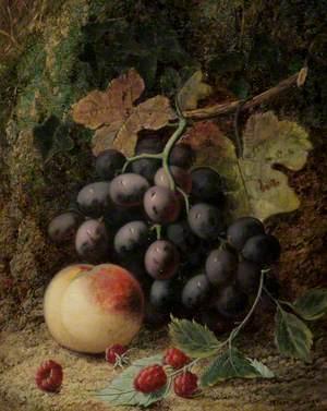 A Fruit Study