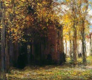 Autumn Leaves, Belgium