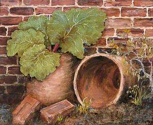 Bricks, Pots and Rhubarb
