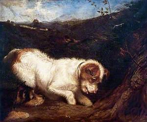 Two Fox Terriers in a Landscape