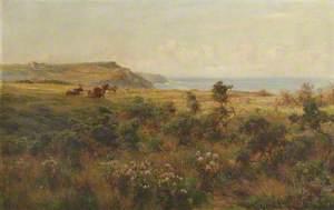 Moor and Sea
