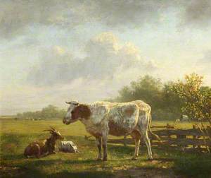 Cow and Goats in a Landscape