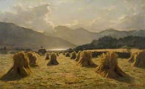 Harvest Time in Lorne
