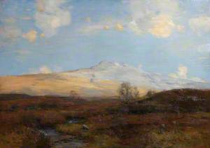 A Perthshire Moorland