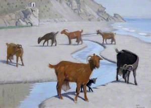 Goats on the Shore