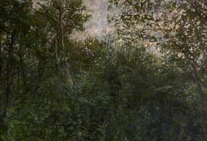 Dead End in Stoke Woods