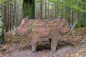 Wild Boar Seat