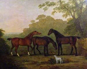 Hunters at Grass