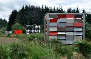 Salmon Cubes