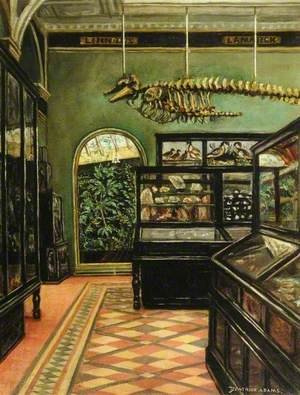 View of the Science Gallery at Weston Park Museum, Sheffield