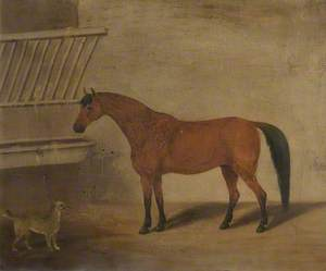 Horse and Dog Belonging to James Scarlett