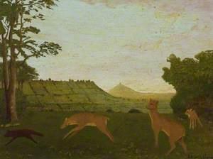 Fallow Deer Chasing off Fox, Cockmill, Pilton