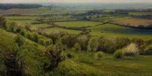 Westwards, from Ham Hill No. 1
