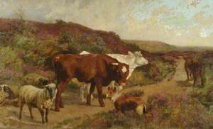 Cattle and a Dog on the Common