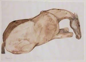 Lying Down Horse