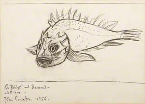Small Monochrome Fish