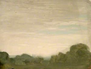 Light Sky and Trees