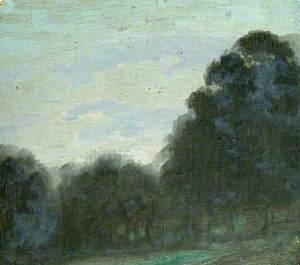 Dark Trees and Blue Sky