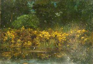 Yellow Bushes by a Pond