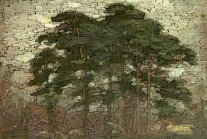 Dark Pine Trees