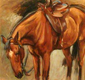 Chestnut Horse ('Cookie' the Hunter)