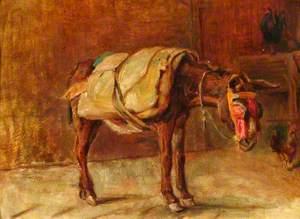 The Italian Donkey