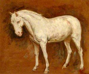 The Grey Horse