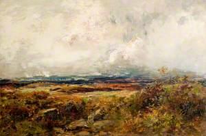 A Galloway Moor