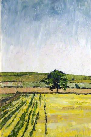 The Yellow Field, Tinwald