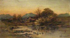 The Duckpond