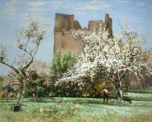 An Old Castle Orchard, Longniddry