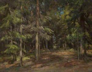 Firwood with Deer
